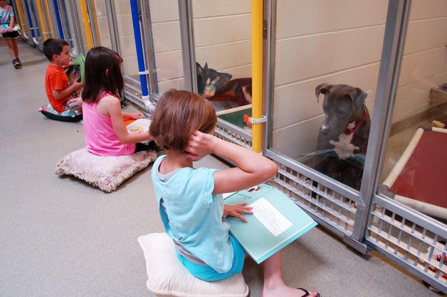 Kind liest Hund aus Buch vor