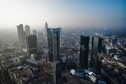 Hundepensionen in Frankfurt