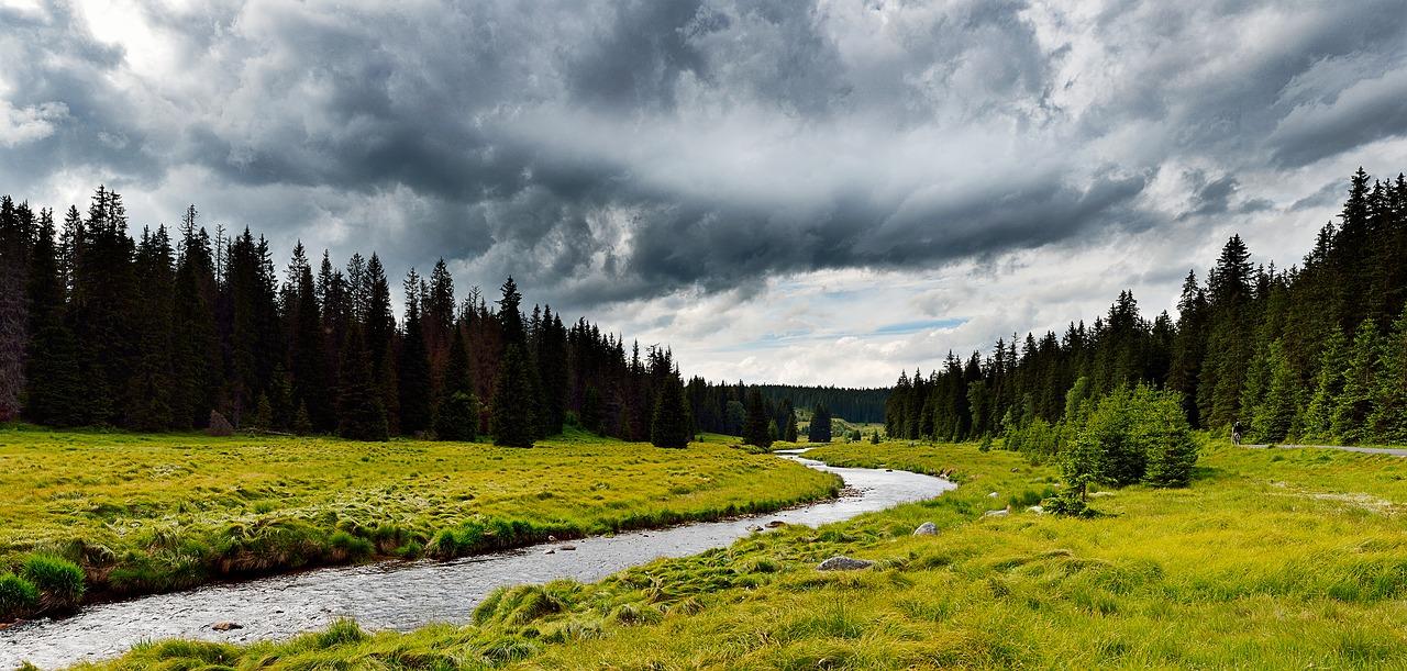 Der Böhmerwald eignet sich hervorragend für einen Urlaub mit Hund.
